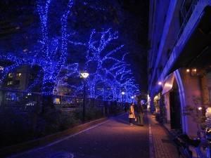 目黑川沿岸點綴上約40萬顆LED燈,瞬時讓街景多幾分神祕夢幻的感覺