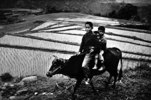 作品攝於桃園復興鄉,1974年(照片提供:台灣文化中心)