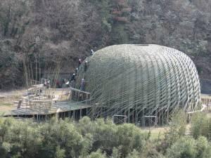 王文志推出名為「橄欖之夢」竹編作品(照片提供:中央社)