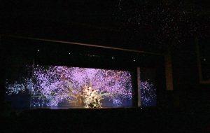 舞者疊在一起演繹櫻花樹綻放的意象