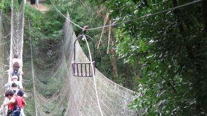 吊橋跟滑車