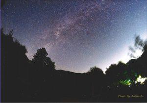 在奧多摩的深山體驗星空浴,也是森林療法的課程之一(Photo by Namiki)