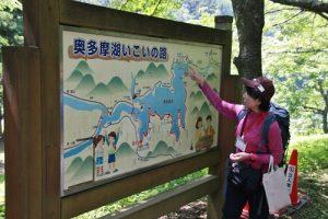 森林療法之一,有嚮導解說森林步道的自然環境