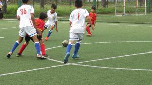 台灣小球員在身材上有優勢
